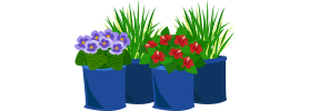 Plant-Sacks